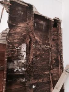 termite attack house in Newport, Melbourne