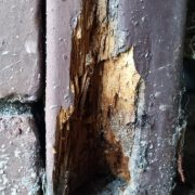 is it termite damage or rot